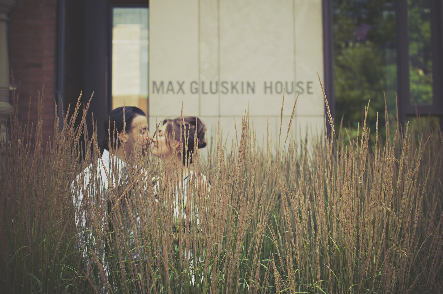 man and woman kissing near green plants